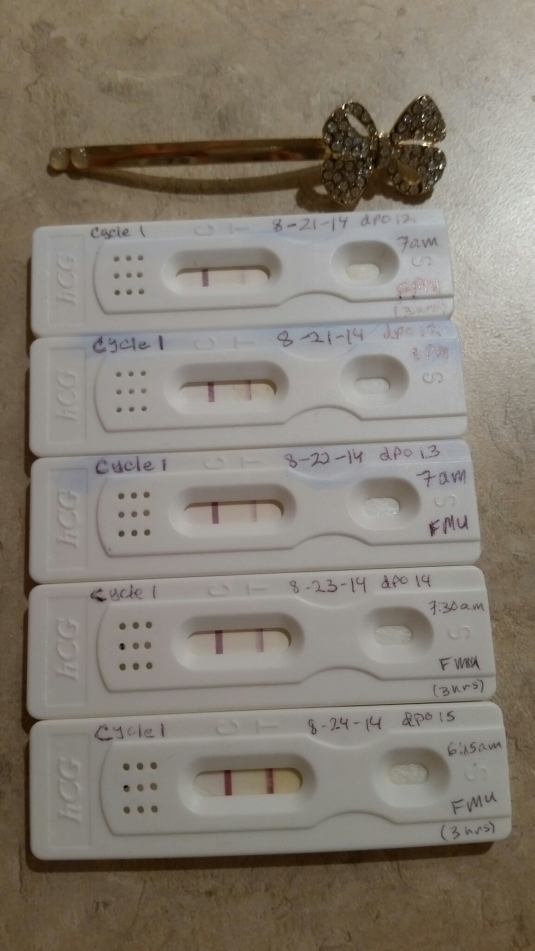 I didn't take quite as many pregnancy tests as I did with my first pregnancy, but only because I ran out and couldn't sneak away to get some while my parents were in town.  :P